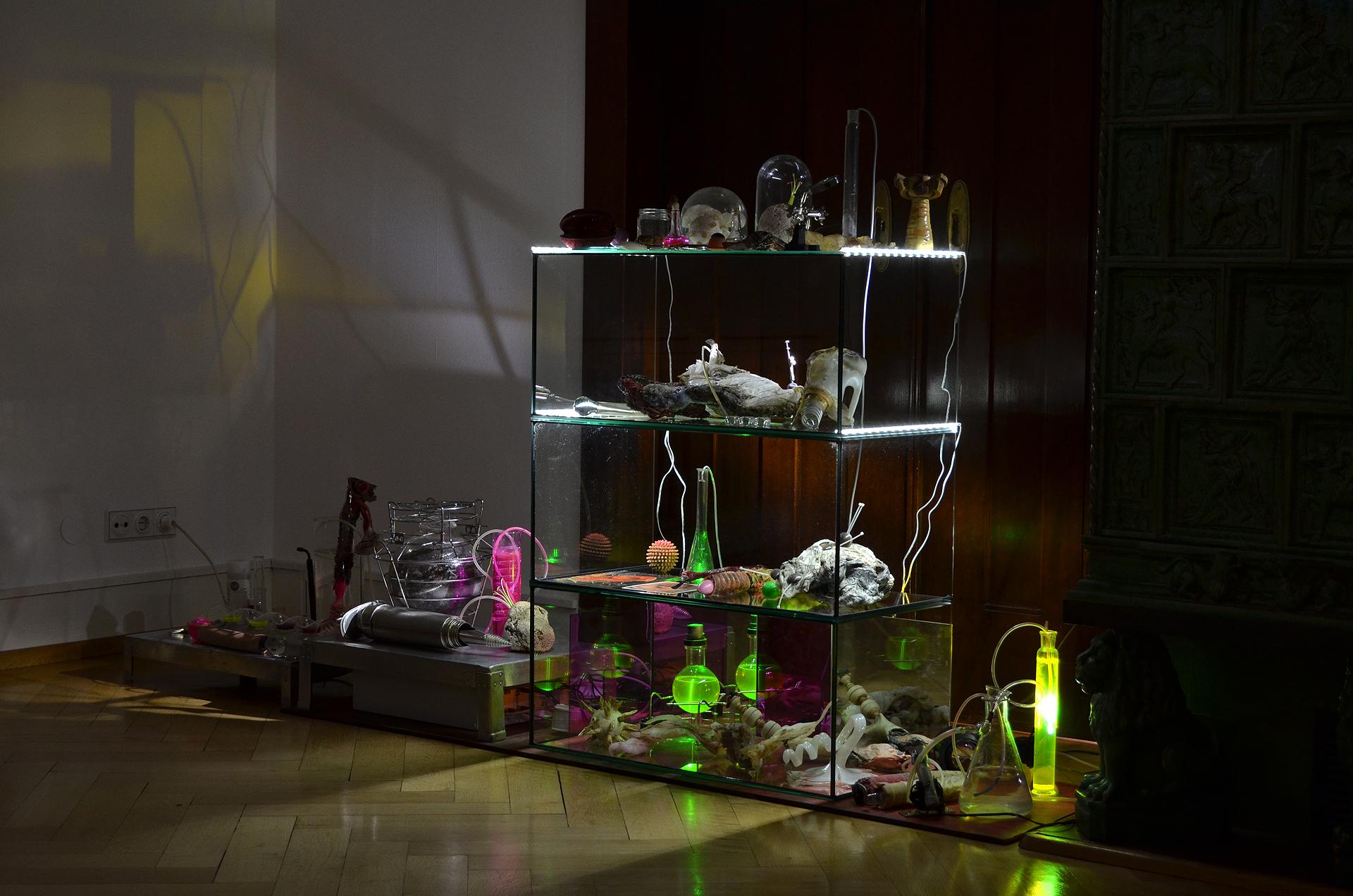 Ausstellungsansicht der Installation Transnature von Stefan Zoellner im Haus am Werderplatz, Heidelberg | Das Labor