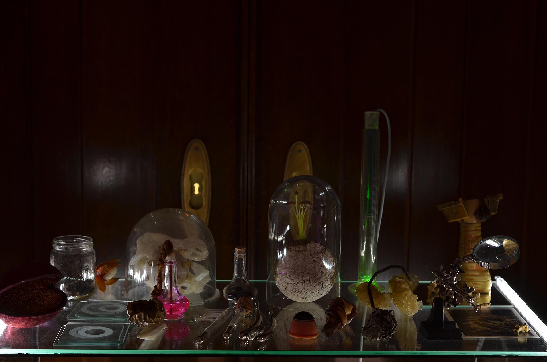 Ausstellungsansicht der Installation Transnature von Stefan Zoellner im Haus am Werderplatz, Heidelberg | Das Labor, Details