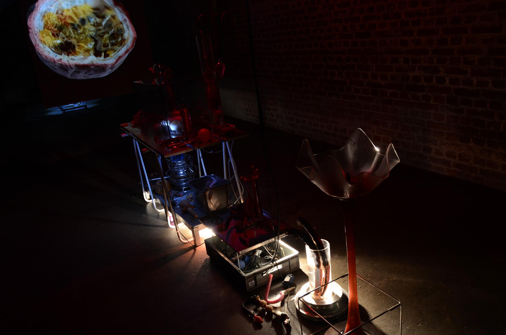 Ausstellungsansicht Synestheticon von Stefan Zoellner, Labortisch