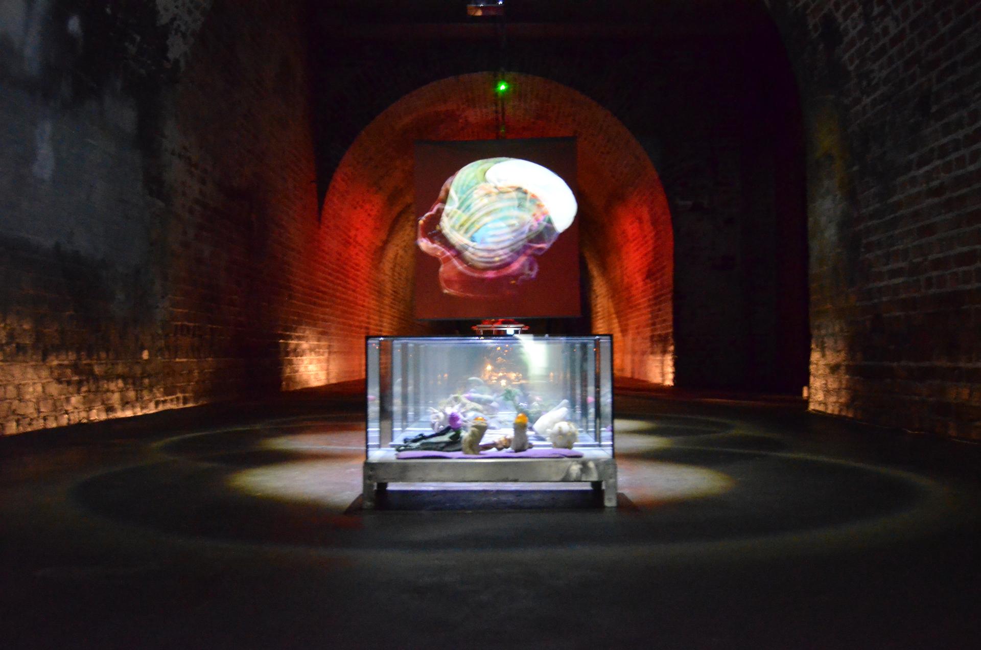 Ausstellungsansicht Synestheticon von Stefan Zoellner, Transnature
