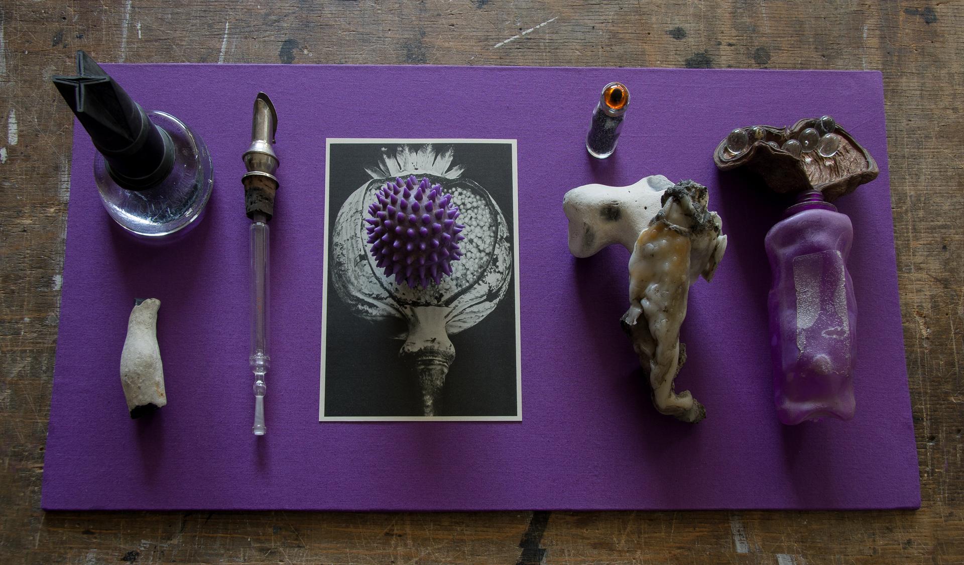 Objektvitrine aus der Serie Wu Wei von Stefan Zoellner