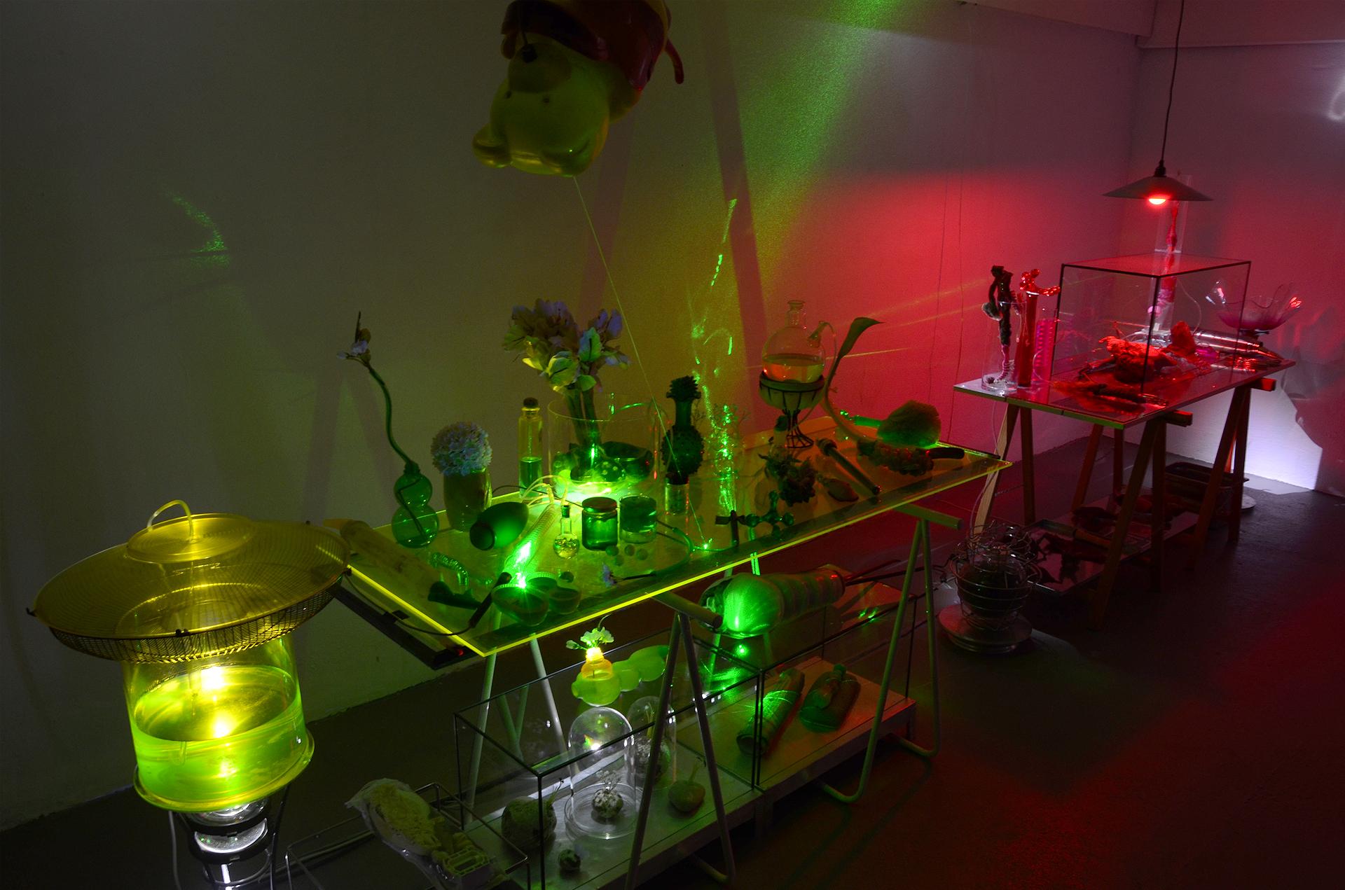 Ausstellungsansicht der Installation Transnature von Stefan Zoellner im Saarländischen Künstlerhaus | Grüner Labortisch