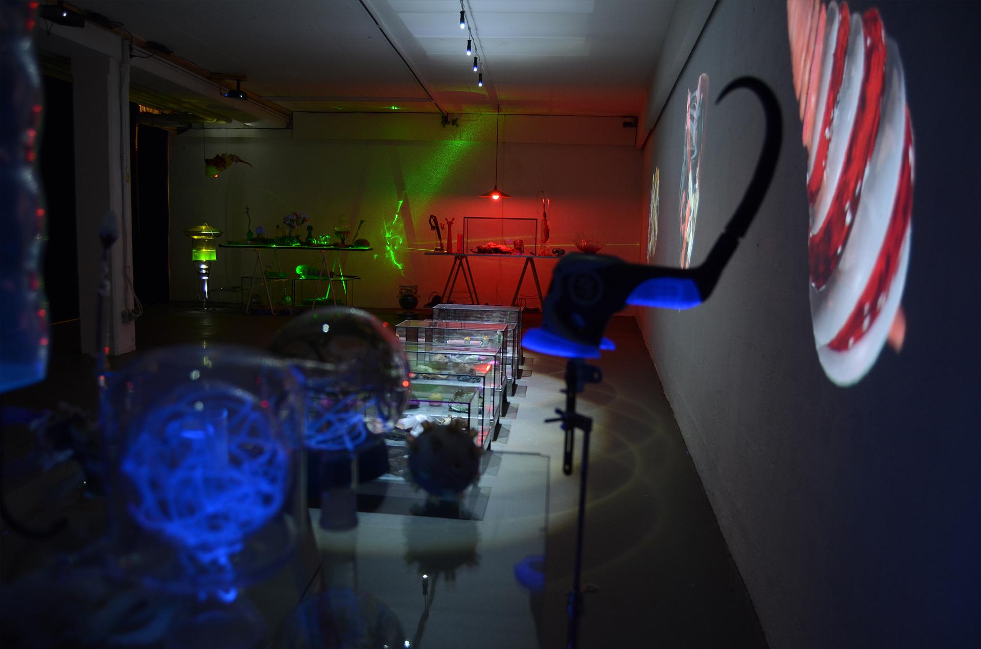 Ausstellungsansicht der Installation Transnature von Stefan Zoellner im Saarländischen Künstlerhaus | Raumansicht