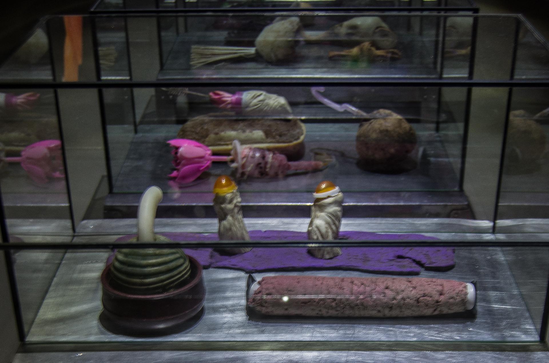 Ausstellungsansicht der Installation Transnature von Stefan Zoellner im Saarländischen Künstlerhaus | Detail Objekte der 7 Vitrinen