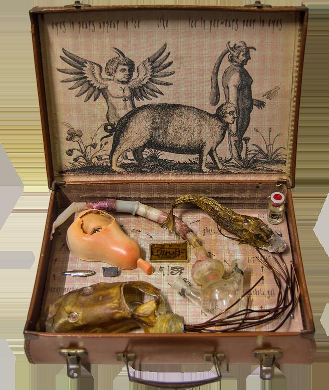 Chimera, Koffer mit Objekten von Stefan Zoellner